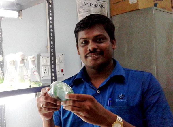 Dr. Veerabadhran Maruthanayagam